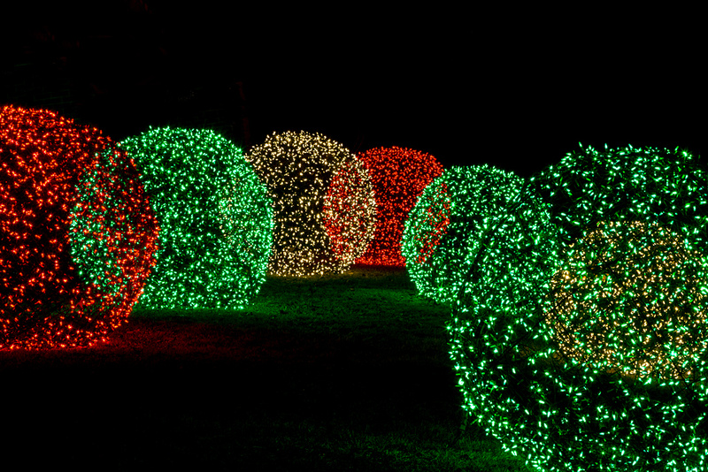 Holiday Lights at the Garden