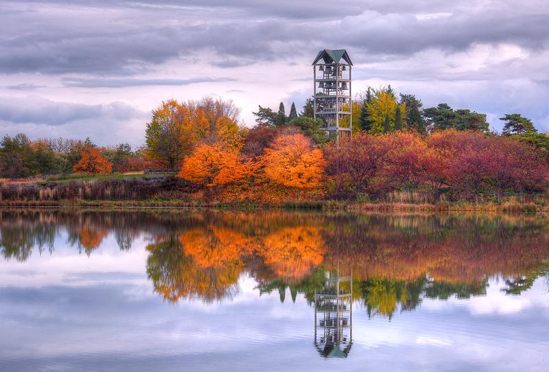 Evening Island in Fall