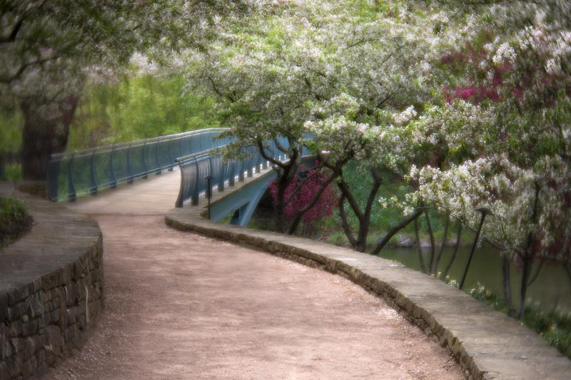 Garden Bridge in Spring